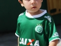 CHAPECOENSE X ATLETICO PR,  CAMPEONATO BRASILEIRO DE FUTEBOL SERIE A 2015, CHAPECO, SANTA CATARINA, BRASIL